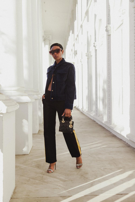 Dennaya-Famous-Dior-Lady-Bag-1.jpg