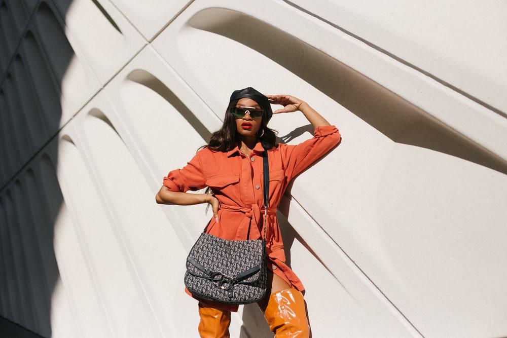 Dennaya-Famous-Dior-Bag-13.jpg