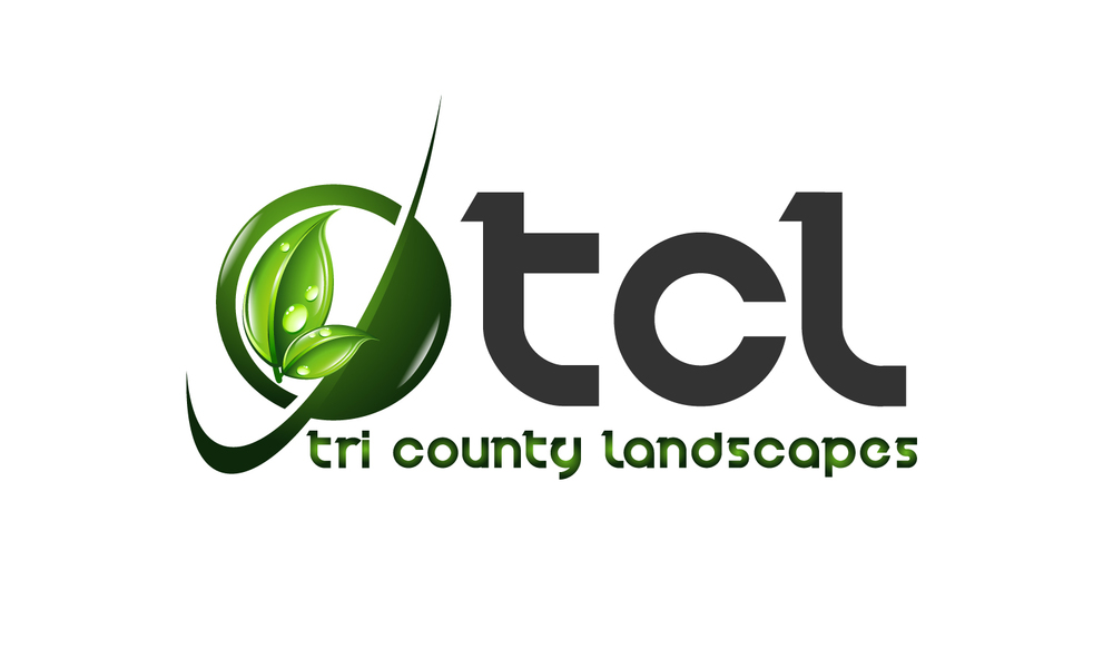 new tcl logo .jpg