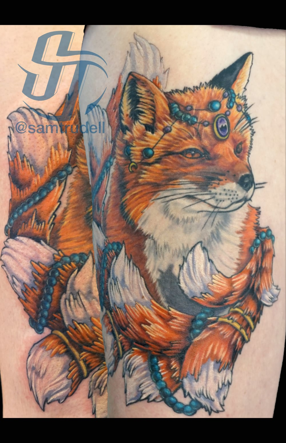 foxmadison.jpg