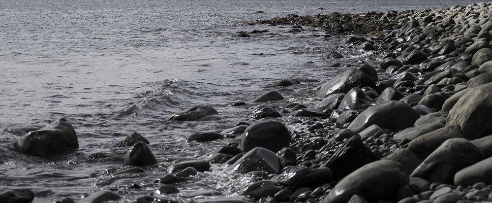 Shore_DSC_0029.jpg