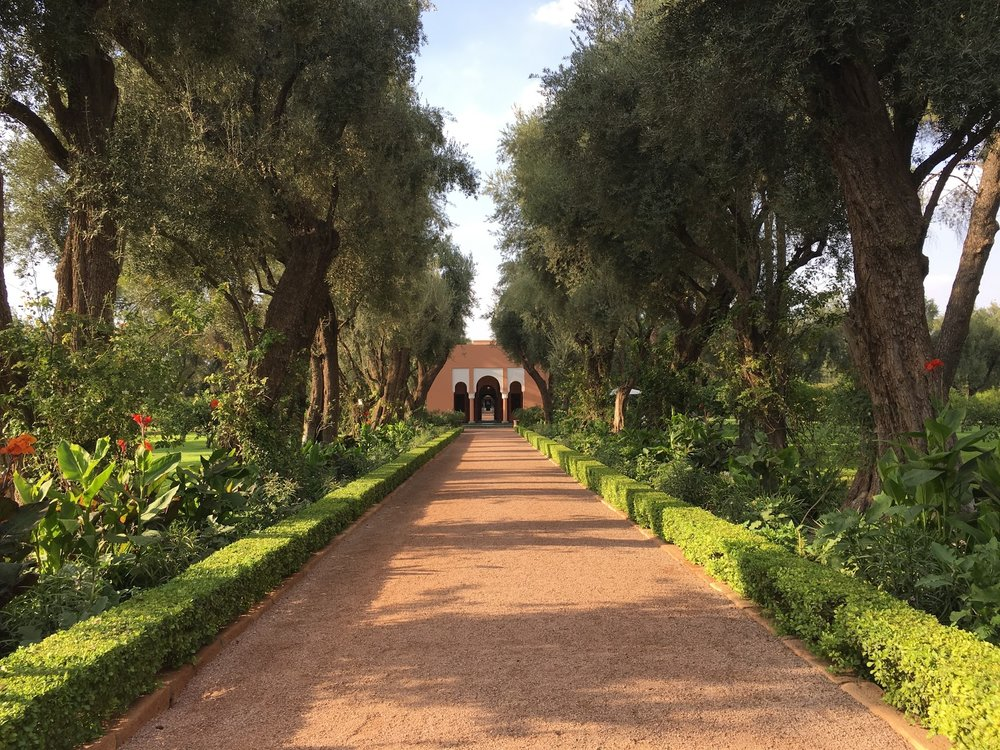 The beautiful gardens of La Mamounia