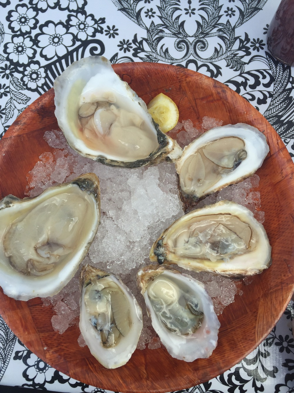 Freshly shucked east coast oysters