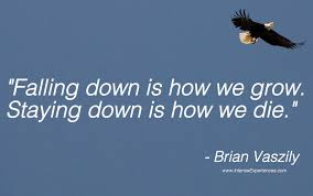 falling down quote.jpg