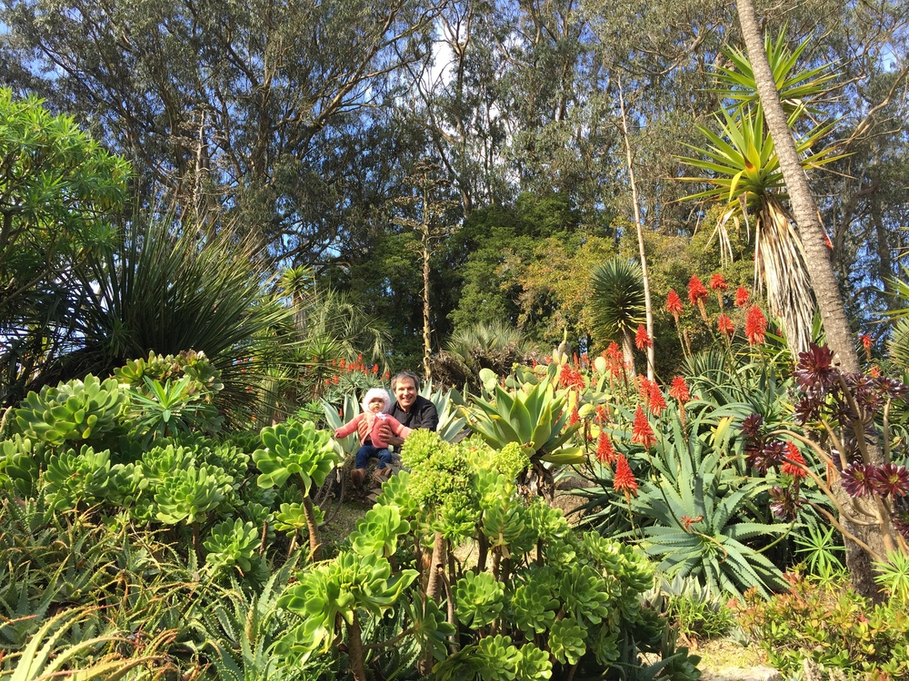 Getting our dose of succulents at the San Francisco Botanical Garden