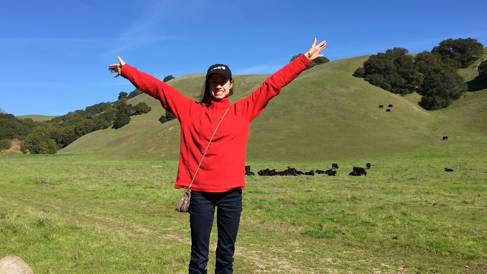 You know how you see all those rolling hills when you are driving in the Bay area? Go to Briones Regional Park- you can actually walk on them!