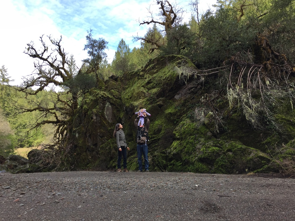 On the nature hike of a lifetime in Branscomb