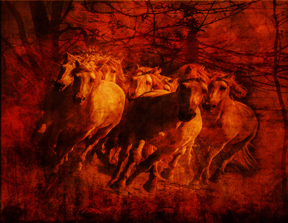 wild_fire_horses-stampede.jpg