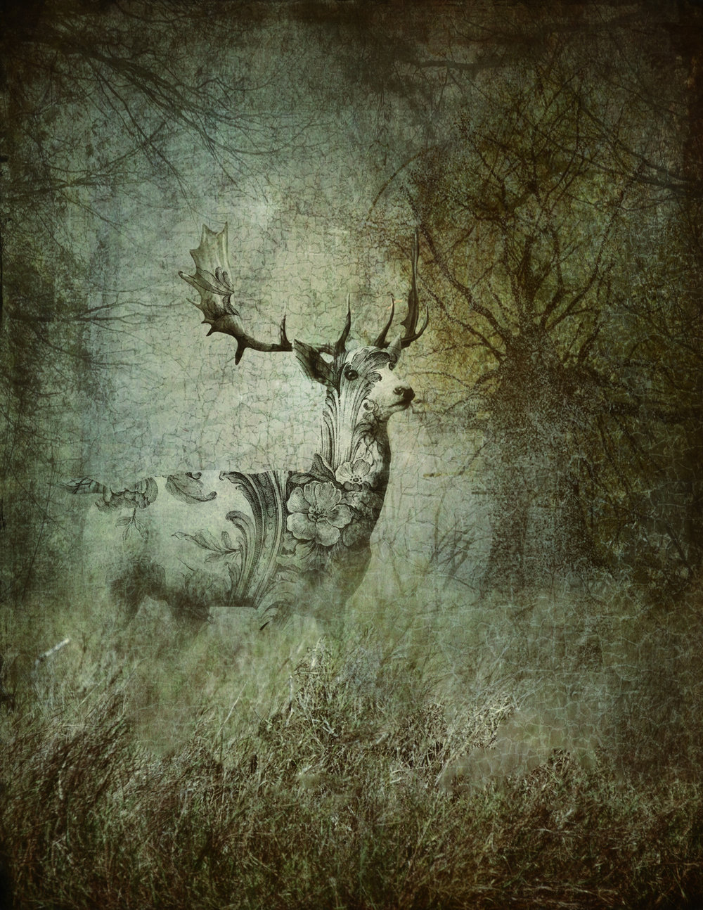 Forest-Spirit.jpg