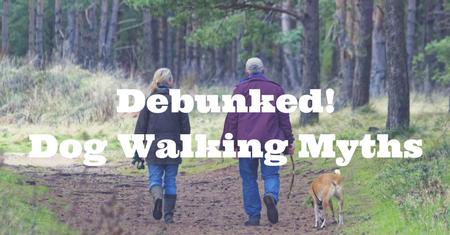 Debunked!Dog Walking Myths.png