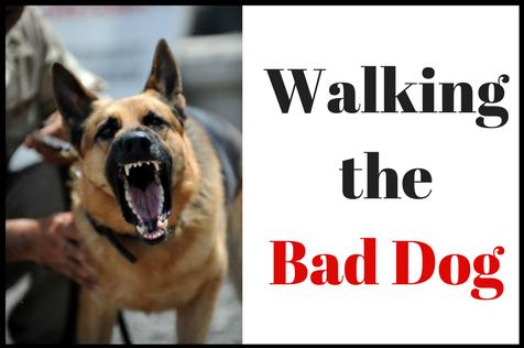 Bad Dog.png