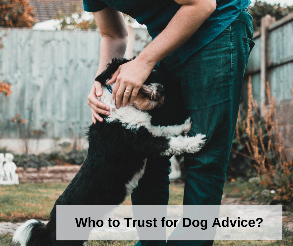 Who Do I Trust for Dog Advice_2 (1).png