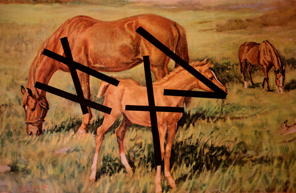 horse sticks_5944.jpg