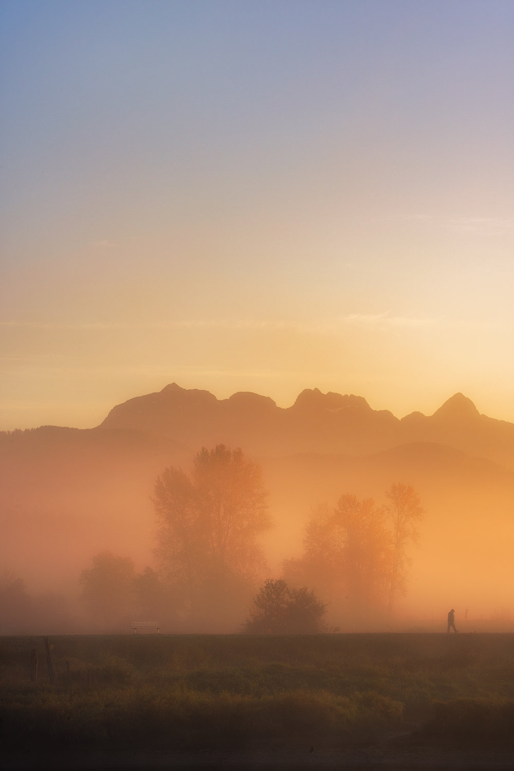 Golden-Ears-Mountain-Pitt-Meadows.jpg