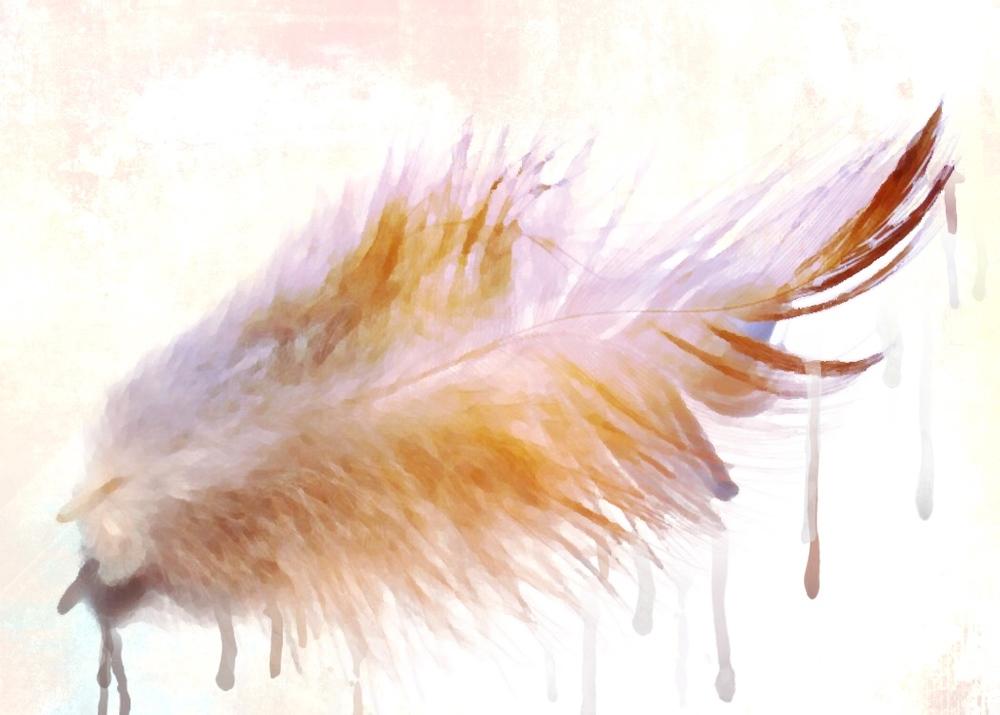 Feathery.jpg