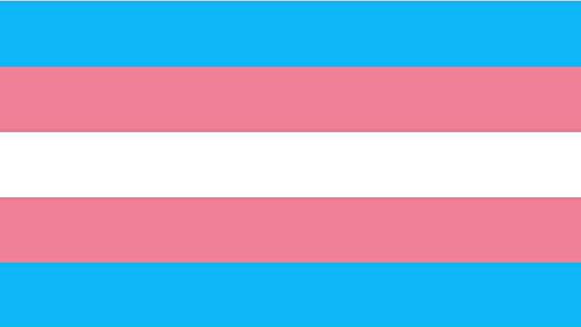 Transgender-flag-jpg.jpg