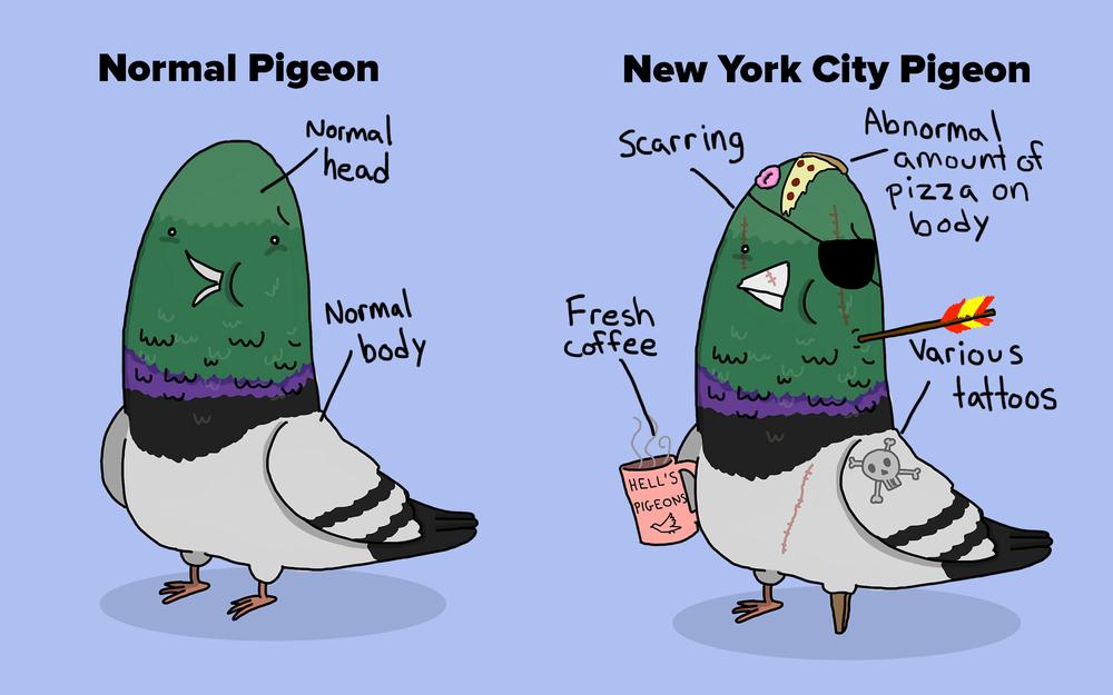 Pigeons-contrasting.jpg