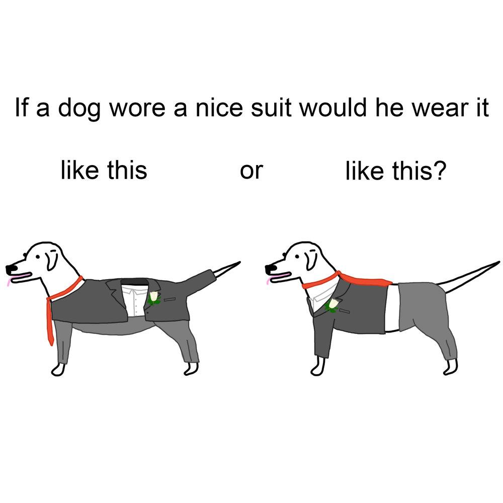 dog-suit.jpg