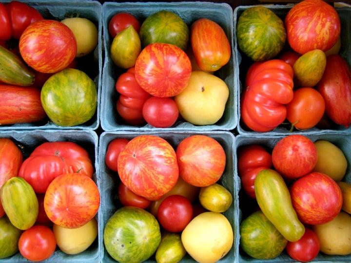 tomatoes5.jpg