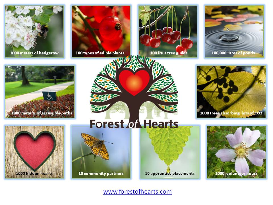 forest-of-hearts-in-numbers