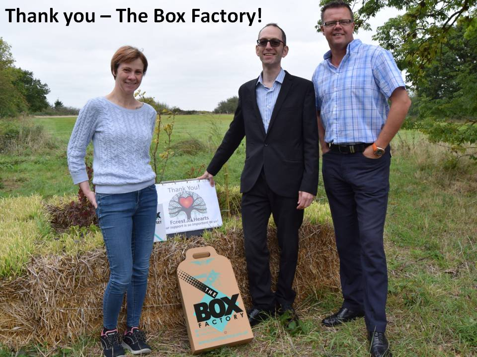 The Box Factory.jpg