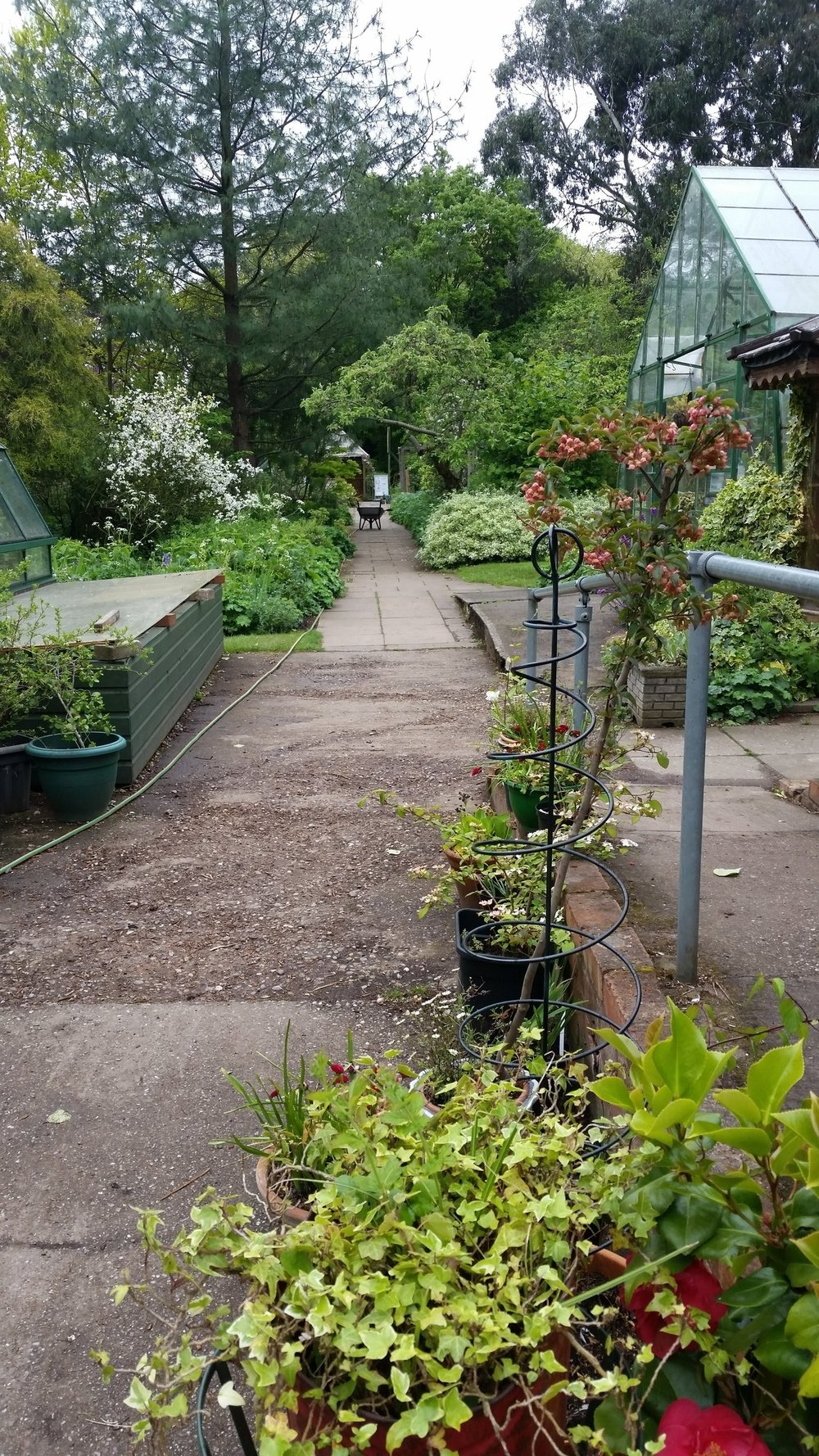 Martineau_garden_main_path.jpg