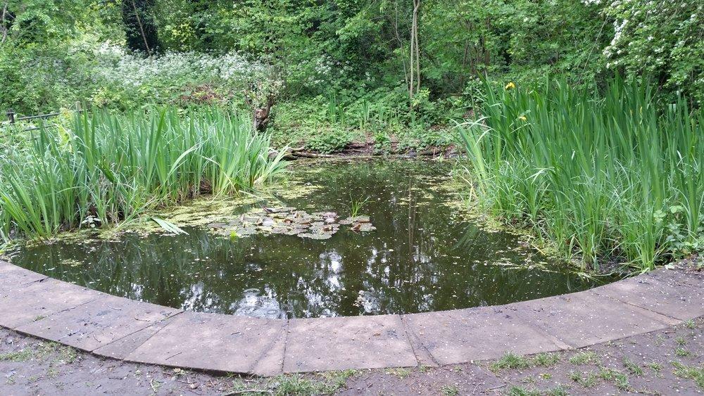 Martineau_garden_pond.jpg