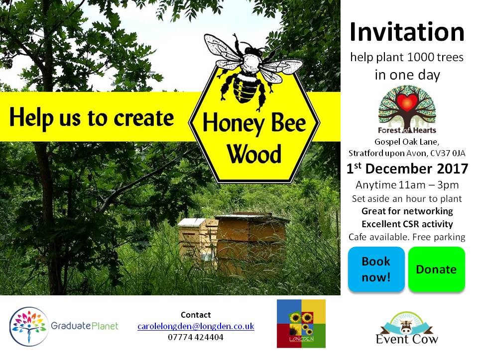 Help us to create Honey Bee Wood