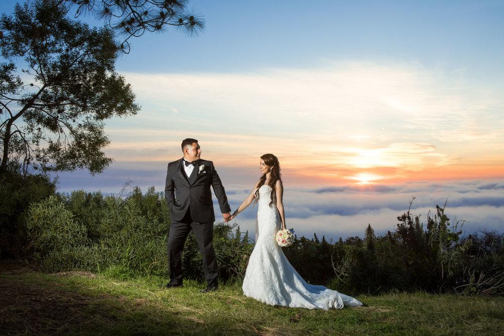 WebsiteGalleries_Weddings-3.jpg
