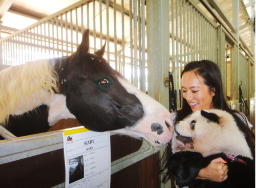 The black and white YüMi giving the black and white Karry some kisses. (YüMi was desperately trying to reach Kary by jumping up against her stable, and eventually she was lifted up so she can give Kary a kiss).