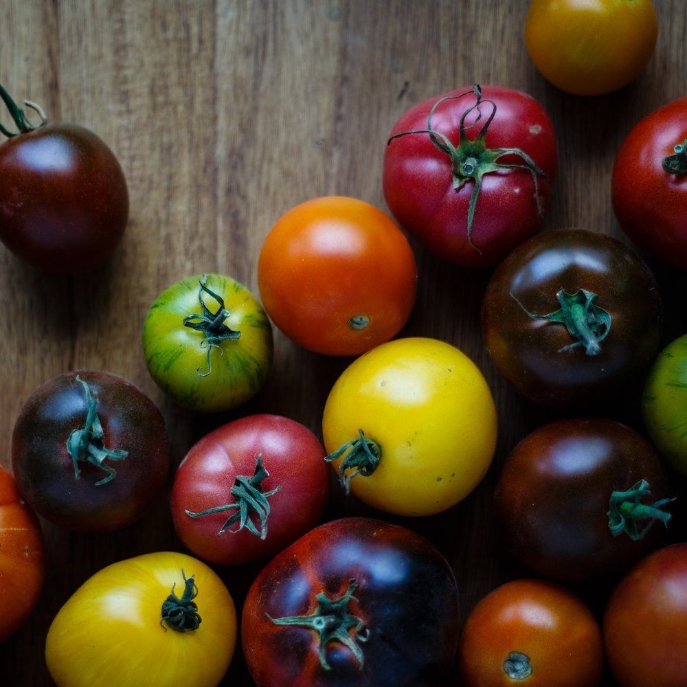 A world of tomatoes - From seed to table