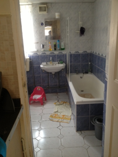 Bef_Ref_Cat_Bathroom.JPG