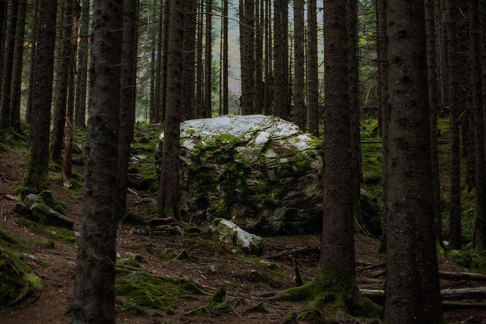 Norway017.jpg