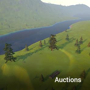 Auction_Tile.png