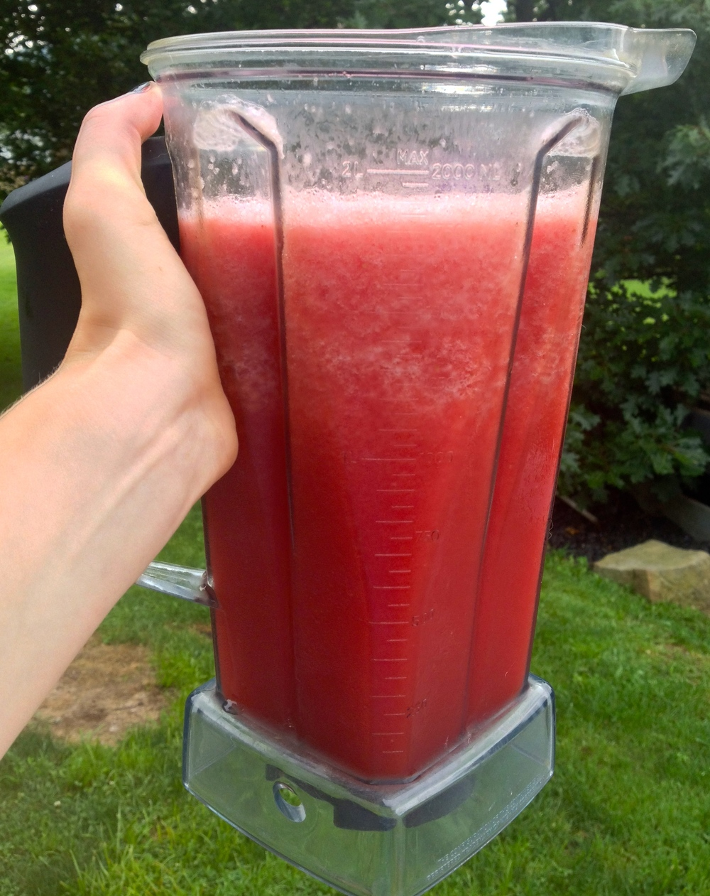 Watermelon Slush