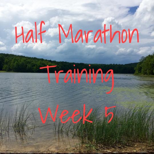 Create N Plate Half Marathon Training