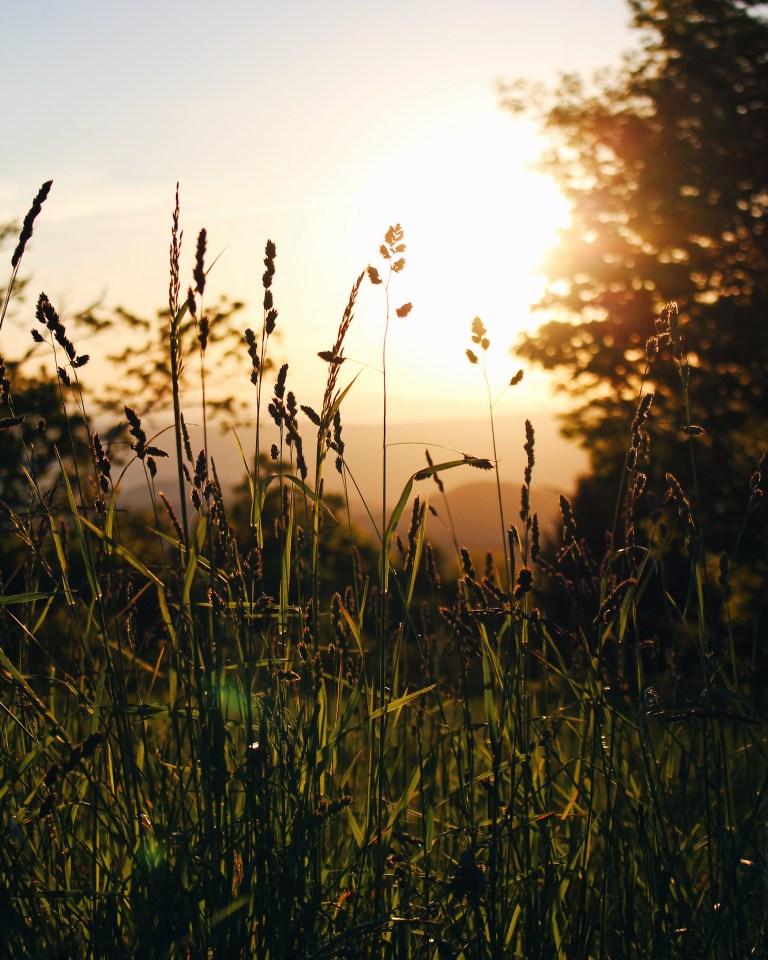 Shenandoah-Sunsets.jpg