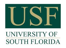 USF Bulls logo.jpg