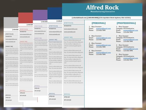 The Executive Resume Template Package — Digital Template Creations