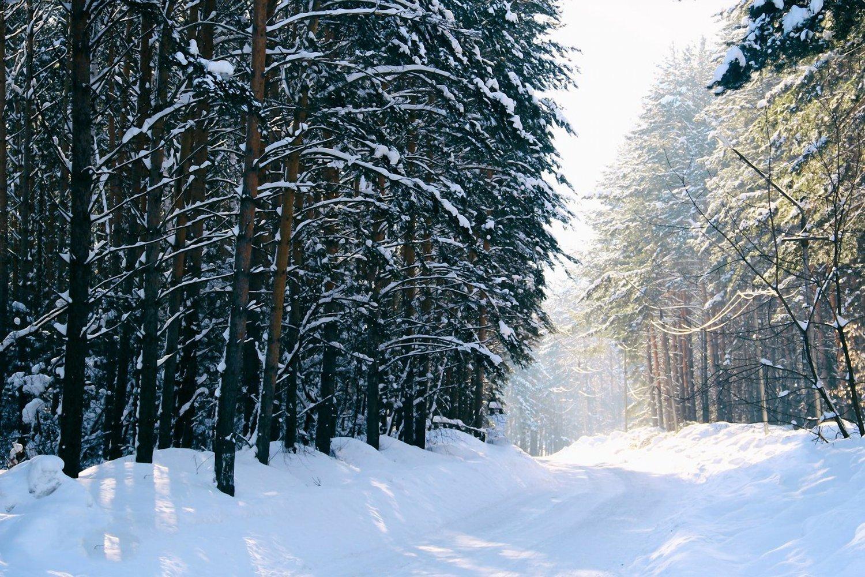 Siberian Black Ice Race — Explorers Connect