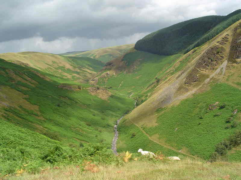View of the beautiful Doethie Valley