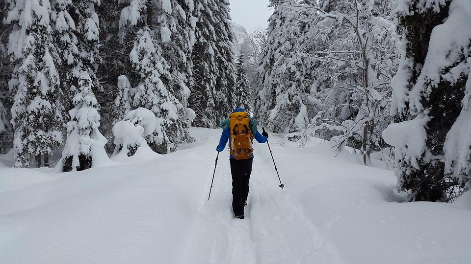 hiking-3032714_960_720.jpg