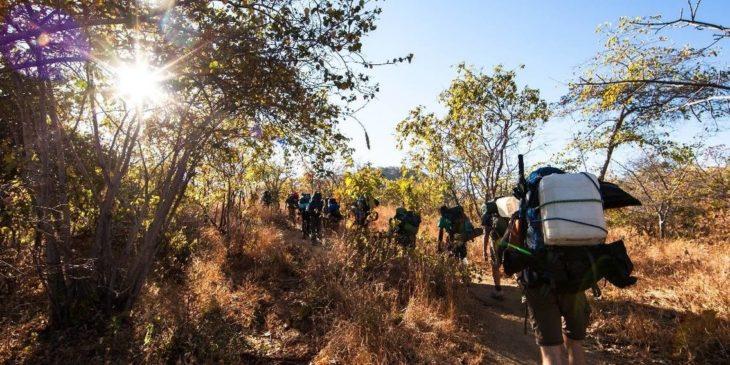 Hero_Volunteers-trekking-in-Tanzania-730x365.jpg
