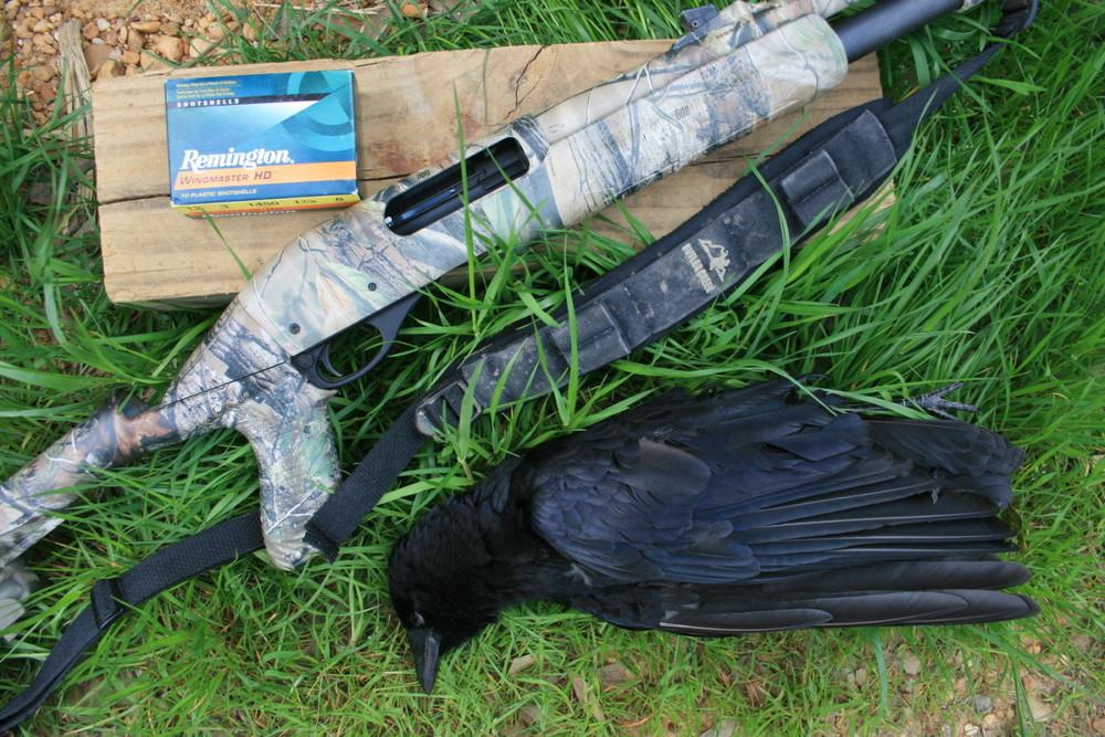 crow-hunt2-1400x934.jpg