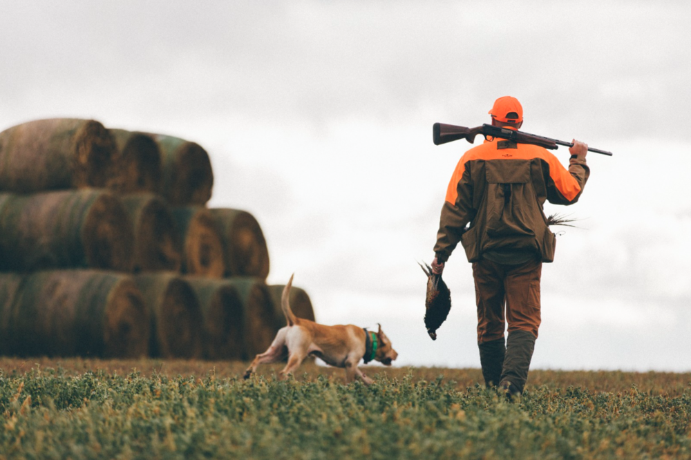 BROWNING: PICKING THE RIGHT SHOTGUN    There is a lot to consider when choosing a hunting shotgun, so we asked Rafe Nielsen, communications manager for Browning, to answer questions and help us through the process.