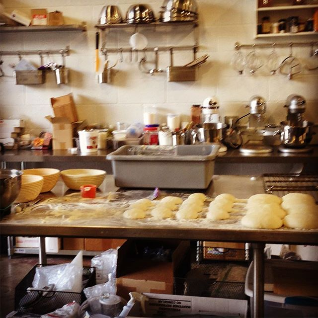 Dough nap-time. Afternoon in the kitchen :)
