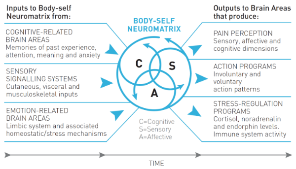 Figure 4: The Neuromatrix Theory of Pain. Adapted from Fig. 1 in Melzack (2001).