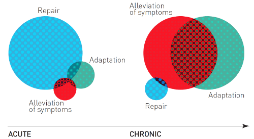 Figure 2: Overlap between alleviation of symptoms and adaptation represents CNS plasticity associated with recovery of chronic pain. Adapted from Fig. 3 in Lederman (2015).