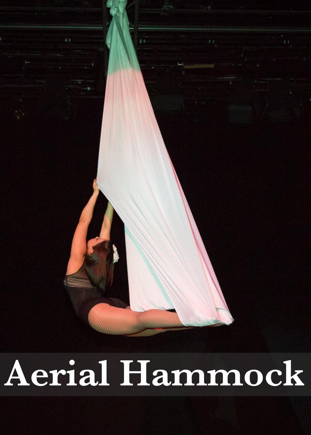 Aerial Hammock.jpg