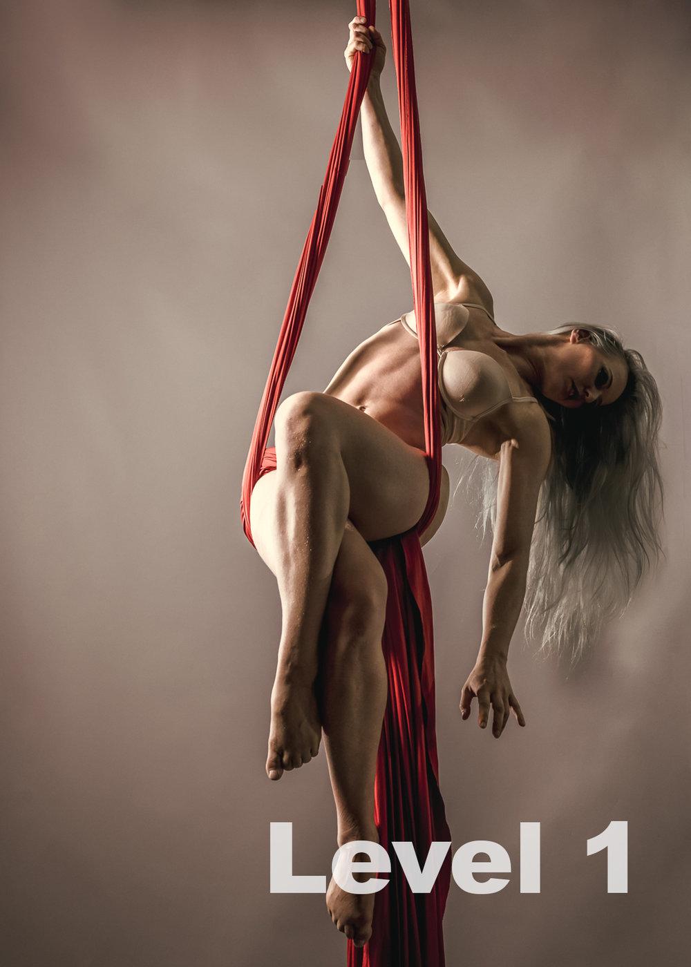 Silk Level 1.jpg